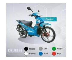 Moto 100% Eléctrica Modelo Panther 3 kW.